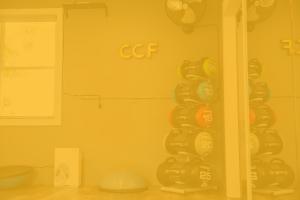 CCF2020037 300x200 - CCF2020037