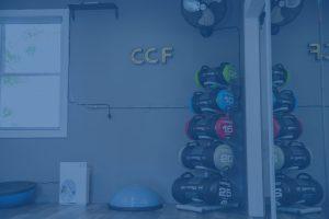CCF2020037 blue 300x200 - CCF2020037-blue